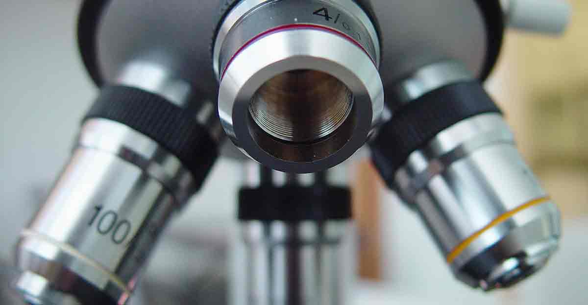 Ciencias, tecnología y medicina