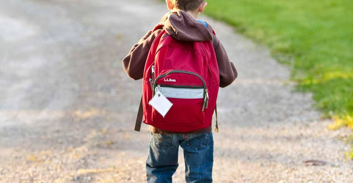 ¿Cuál es la mejor mochila para que los niños lleven los libros al colegio?