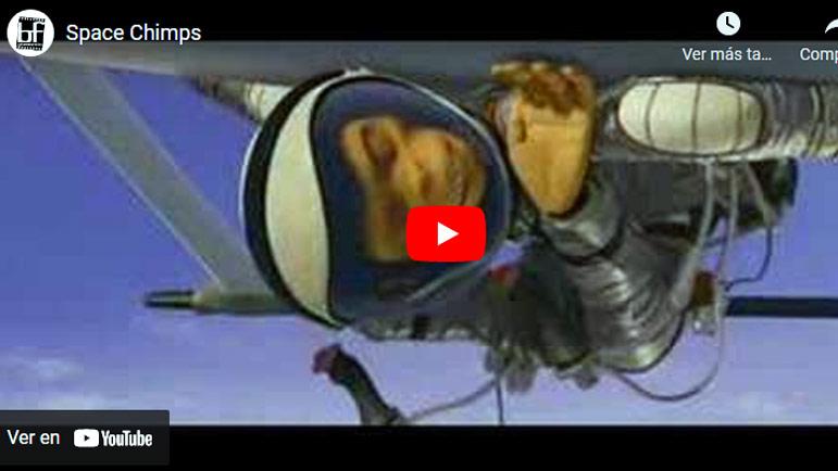 Video Space chimps