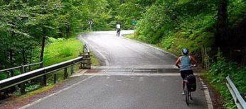 ciclistas-carretera