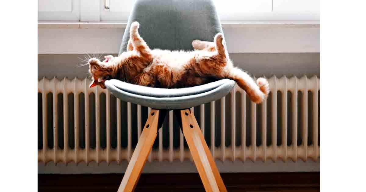reducir gasto en calefacción