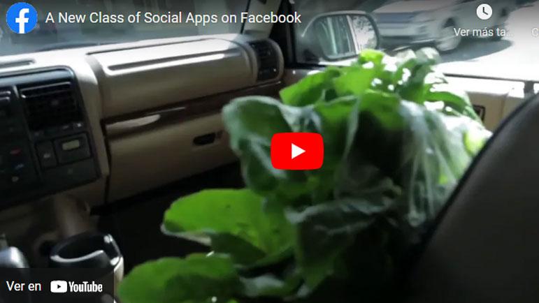 Video explicativo de la información del usuario de Facebook