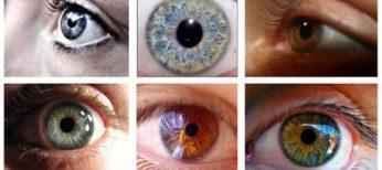 Ojos humanos.