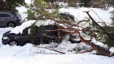 Qué hacer con el seguro ante daños por temporal