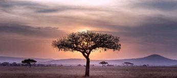 Cosas que no sabes de Sudáfrica...