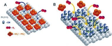 Ruptura del enlace del oxígeno en presencia de ácido sulfúrico sobre platino limpio y platino modificado con cianuro.