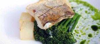 Cien días comiendo pescado de otros