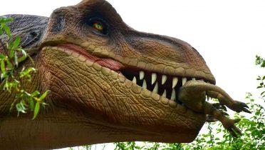 Viaja al pasado con una exposición de dinosaurios de 3 metros de altura