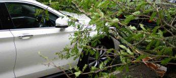Se acabaron los seguros de coche que cubren las multas y sanciones