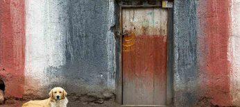 Cerca de la mitad de la población urbana mundial vive en chabolas