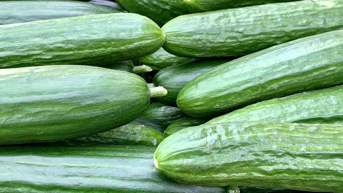 El pepino es un alimento con bajo contenido calórico, depurativo y diurético