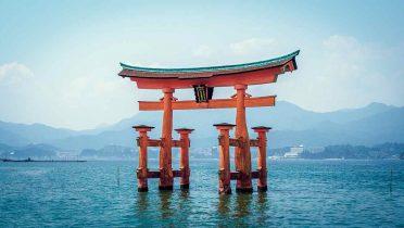 Toyota City en Japón pone en marcha viviendas de bajo consumo, una nueva forma de gestión energética