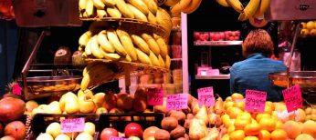 Todo sobre las rutas gastronómicas de España en un único portal: alimentacion.es