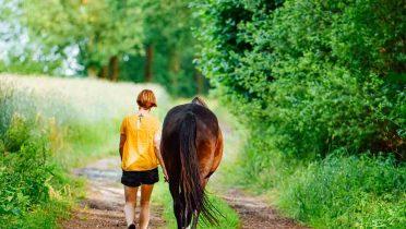 Rutas a caballo y paseos en barco y en globo son los deportes de aventura más demandados
