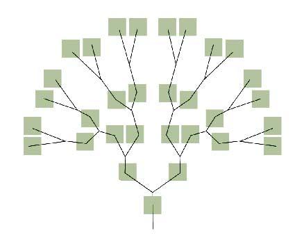 La información viral se distribuye asimilando la estructura de un árbol.