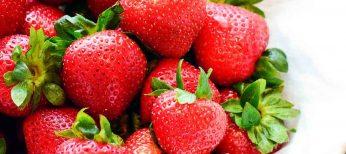 Las fresas protegen de los rayos UVA