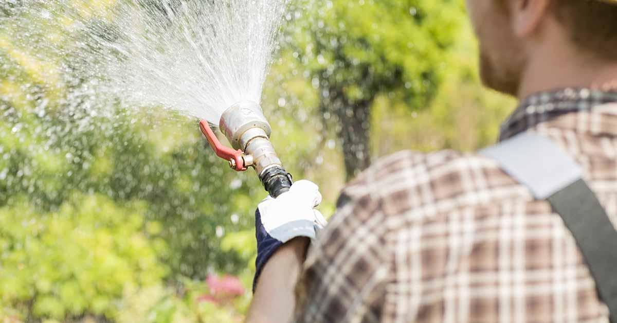 Riega las plantas de noche y otros 9 trucos para ahorrar en la factura del agua