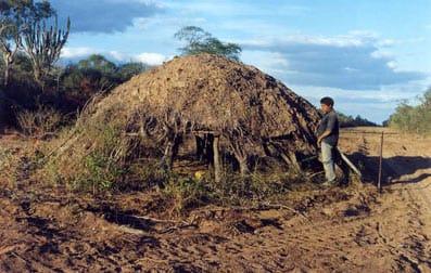 Una casa de ayoreos aislados, descubierta cuando las excavadoras abrieron una carretera a través de su tierra. Al día siguiente la excavadora regresó y derribó la casa.