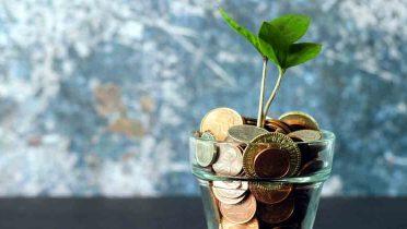 Las cuentas de ahorro o cómo disponer de tus ahorros con total disponibilidad y algo de rentabilidad