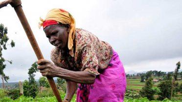 La producción mundial de alimentos dependerá de África y Latinoamérica