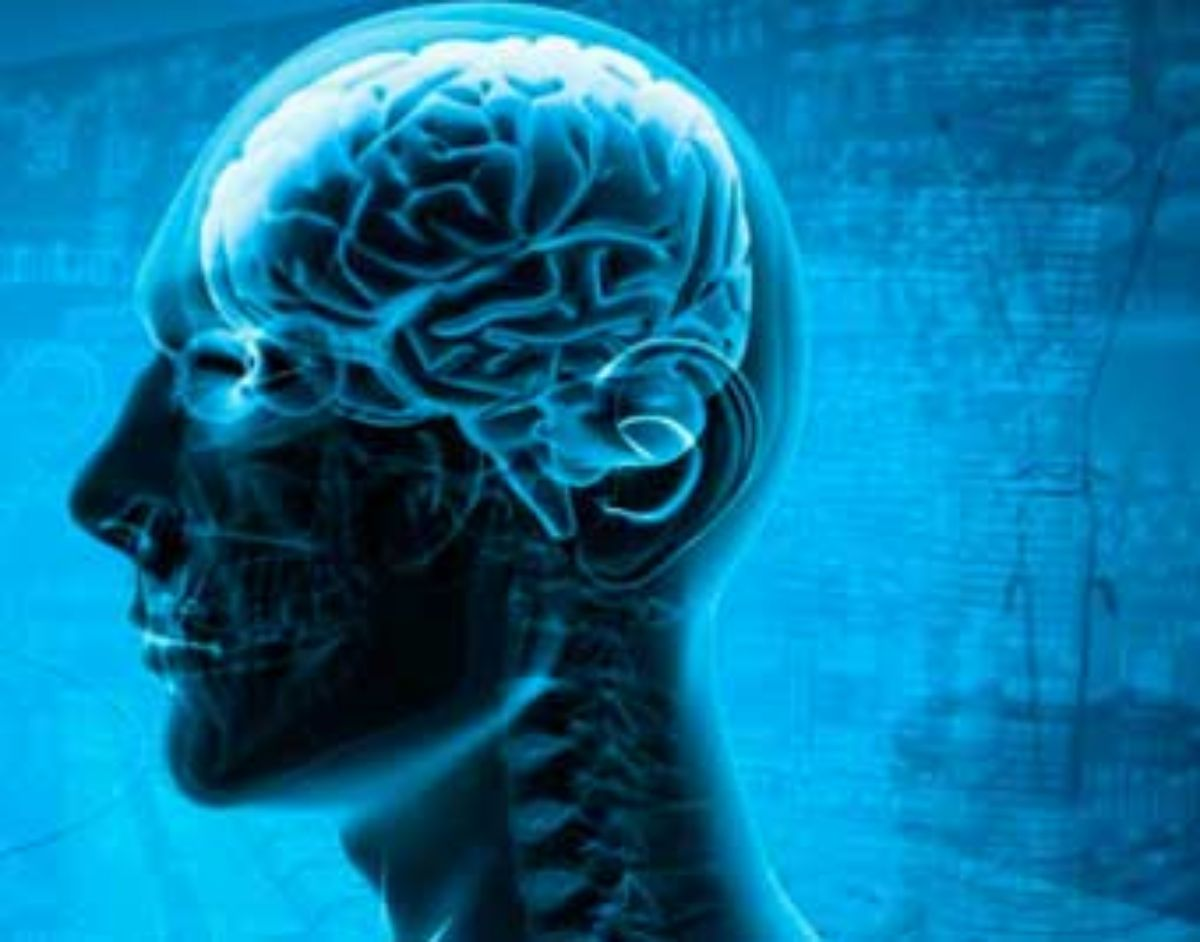El cerebro y la visión, claves para una correcta lectura eficaz.