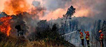 Los incendios volverán este verano ante la falta de prevención y de que el 96 por ciento son provocados