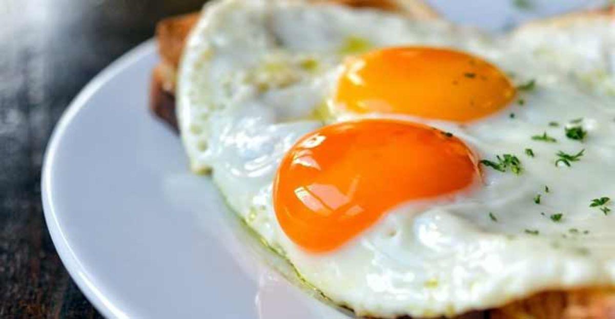 Comer huevo es malo, un mito