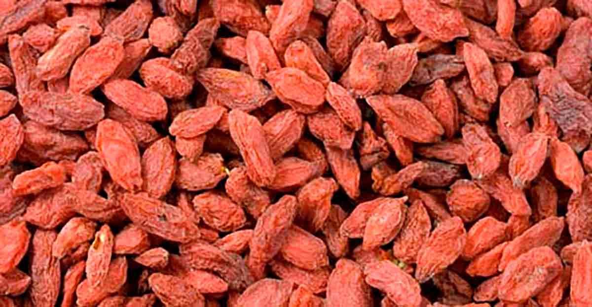 La dieta Dukan provoca piedras en el riñón