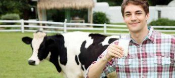 Las mejores marcas de leche son Tierra de Sabor, Llet Nostra, La Vaquera y Condis