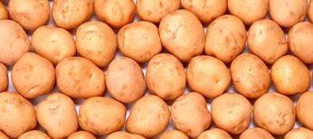 Cómo pelar patatas, ajos, aguacates y mangos más rápido