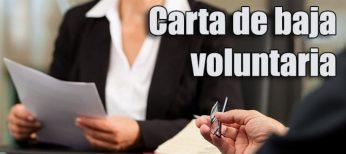 Modelo de carta para la baja voluntaria en el trabajo
