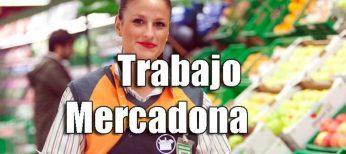 Mercadona tiene 600 ofertas de empleo para trabajar con sueldos a partir de 1.132 euros netos