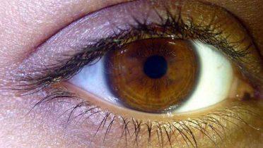 Ojos verde y avellana, españoles