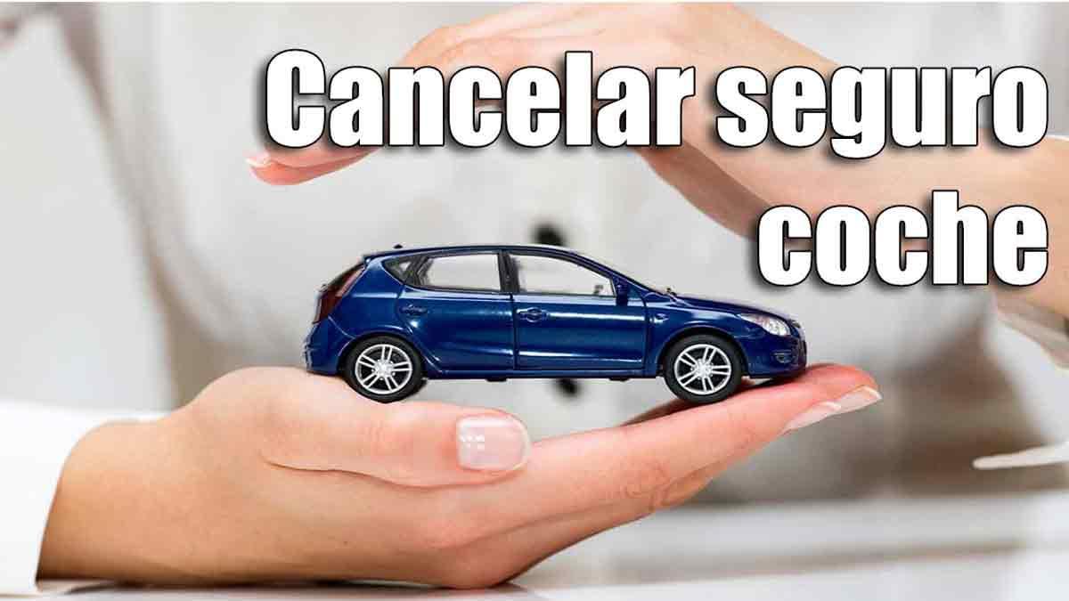Cómo dar de baja el seguro del coche