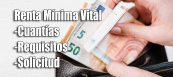 Renta Mínima Vital: cómo cobrar entre 462 y 1.015 euros al mes