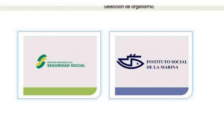 Organismo INSS