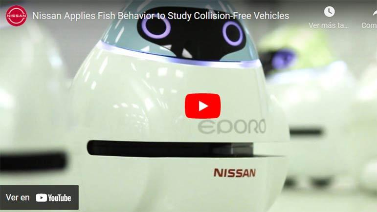 Video explicativo sobre cómo Nissan estudia el movimiento de las abejas