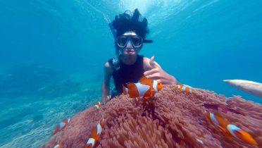 Las 33 playas para hacer snorkel