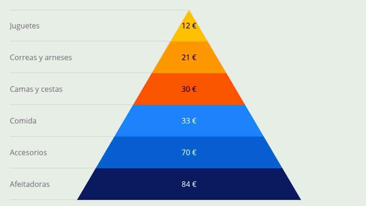 pirámide gasto medio