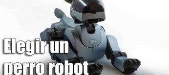 Cómo elegir el mejor perro robot, características y precios