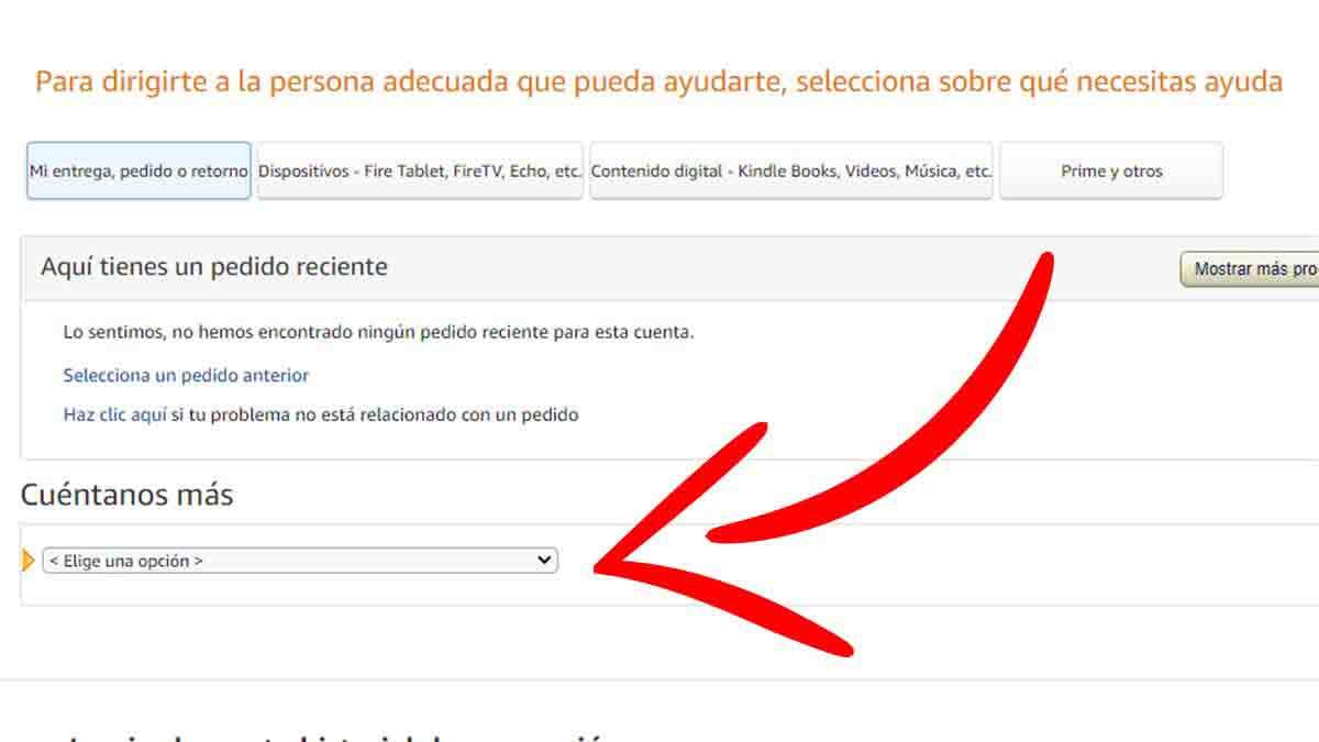Especificar el motivo de la consulta con Amazon
