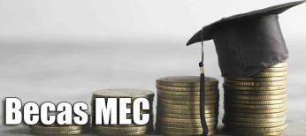 Guía para pedir las becas MEC